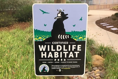 Billede af Sony San Diego Achieved Wildlife Habitat Certification i San Diego